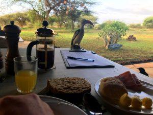 Frühstück in Gesellschaft